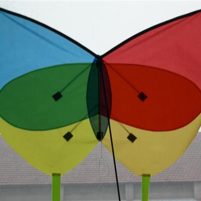 Butterfly Bespoke Shape Kite
