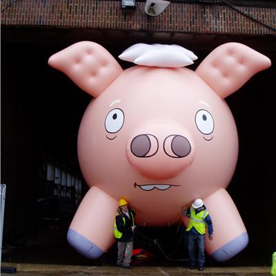 Inflatable Floating Helium Pig