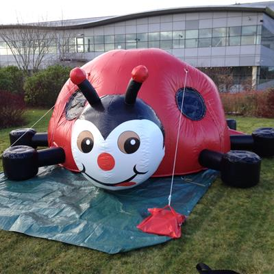 Inflatable Ladybird Dome