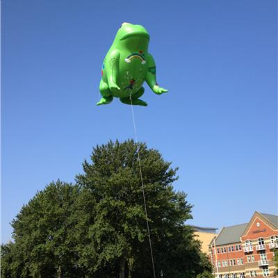 10m helium toad for outdoor use