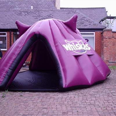 Inflatable Dome designed to look like a cats head for Whiskers.